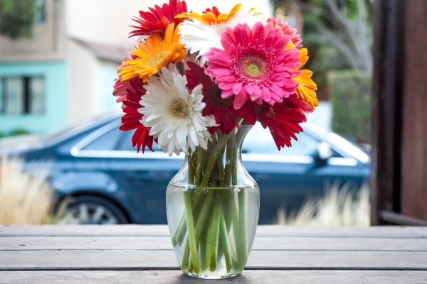 Kā ilgāk saglabāt grieztos ziedus svaigus?